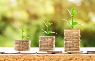 Pila di monete con piantine verdi simboleggiano investimenti ecosostenibili